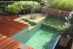 green-natural-pool-design