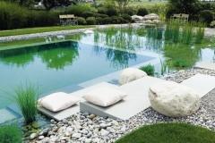 schwimmteich-bauen-steine-wasserpflanzen-kieselweg